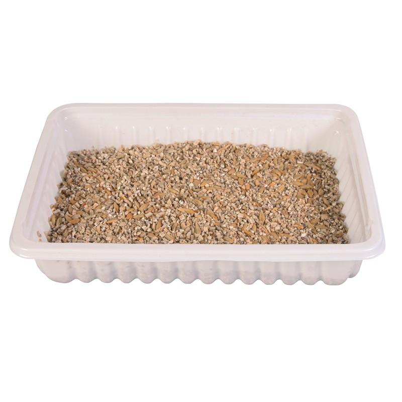 Bac d'herbe à chat tendre 100g